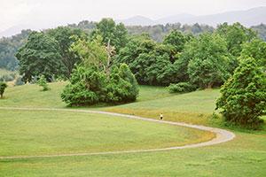Greenfield Trail System