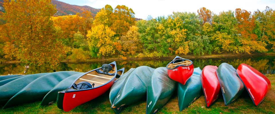 docked canoes